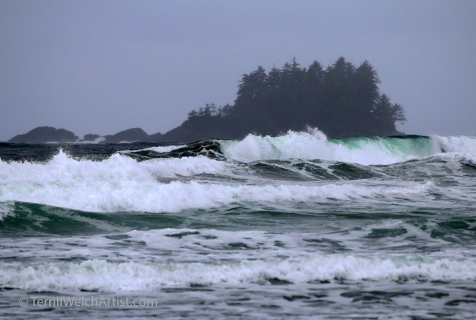 Storm Chesterman Beach by Terrill Welch IMG_1596