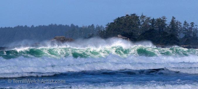 Sun and Sea dance Frank Island Tofino BC by Terrill Welch IMG_1751