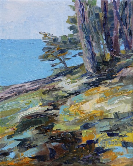 Seaside Mayne Island study 10 x 8 inch oil on canvas by Terrill Welch 2013_08_02 021