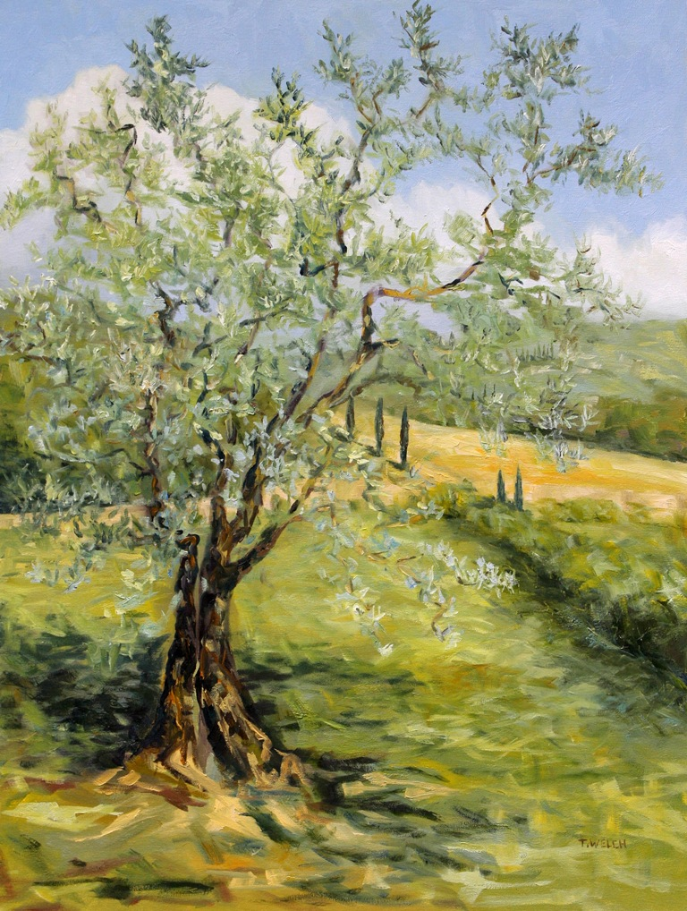 The Olive Tree 40 X 30 Inch Oil On Canvas By Terrill Welch
