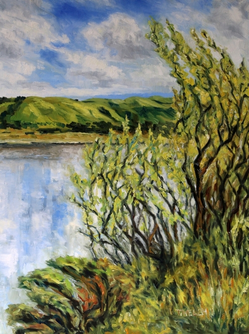 Willows Early Spring by the Quarry Lakes Fremont California 24 x 18 inch walnut oil on canvas by Terrill Welch 2015_06_18 044